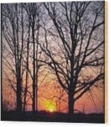 Country Glow Wood Print