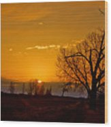 Country Golden Sunrise Wood Print