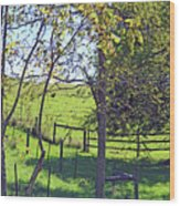 Country Green Wood Print