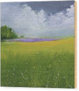 Country Landscape Wood Print