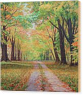 Country Lane - A Walk In Autumn Wood Print