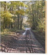 Country Lane In Autumn 2 Wood Print