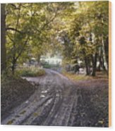 Country Lane In Autumn 4 Wood Print