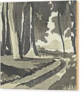 Country Lane In Evening Shadow Wood Print