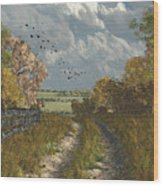 Country Lane In Fall Wood Print