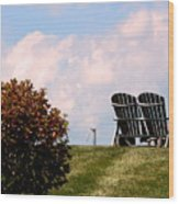Country Life - Evening Relaxation Wood Print