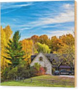 Country Living 2 - Paint Wood Print