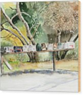 Country Mailboxes Wood Print