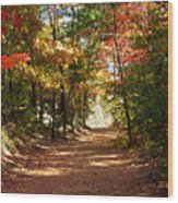 Country Path Wood Print