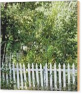 Country Picket Fence Wood Print