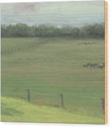 Country Quiet Wood Print