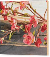 Country Quince Wood Print
