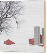 Country Red And White  Wood Print
