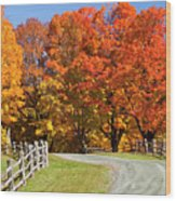 Country Road Autumn Wood Print