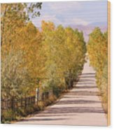 Country Road Autumn Fall Foliage View Of The Twin Peaks Wood Print