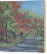 Country Road II Wood Print