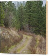 Country Road Take Me Home Wood Print