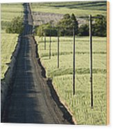 Country Road, Wheat Fields Wood Print