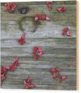 Country Seedling Wood Print
