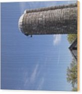 View Of An Old Barn And Silo Wood Print