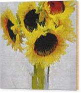 Country Sun I Wood Print