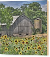 Country Sunflowers Wood Print