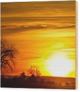 Country Sunrise 1-27-11 Wood Print