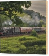 Country Train Ride Wood Print