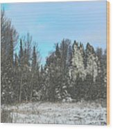 Country Winter 15 Wood Print