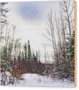 Country Winter 5 Wood Print