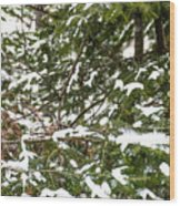 Country Winter 8 Wood Print