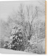 Country Winter Wood Print