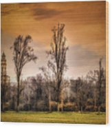 Countryscape With Bell Tower Wood Print