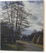 Countryside In Hermannstadt Wood Print