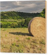 Countryside Of Italy 3 Wood Print