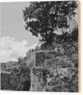 Countryside Of Italy Bnw 2 Wood Print
