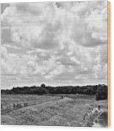 Countryside Views 1 Wood Print