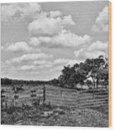 Countryside Views 3 Wood Print