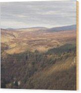 County Carlow Hills Wood Print