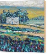 County Wicklow - Ireland Wood Print