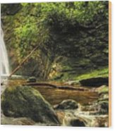 Courthouse Waterfall Wood Print