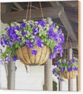 Courtyard Petunias Wood Print