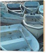 Cove Skiffs Wood Print
