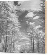 Covered Bridge Dupont North Carolina Wood Print