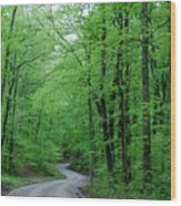 Covered Bridge Road Wood Print by Beverly Cazzell