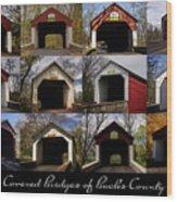 Covered Bridges Of Bucks County Wood Print