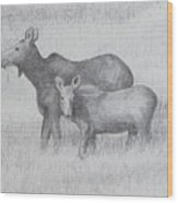 Cow And Calf Moose  Wood Print