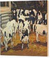 Cow Barn Wood Print