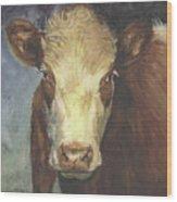 Cow Portrait II Wood Print