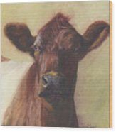 Cow Portrait IIi - Pregnant Pause Wood Print